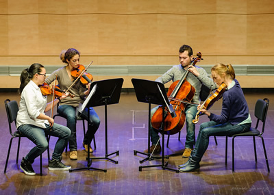 Lebet String Quartet