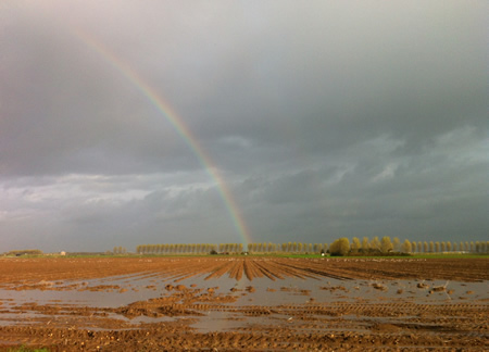 Regenboog Maasdamseweg