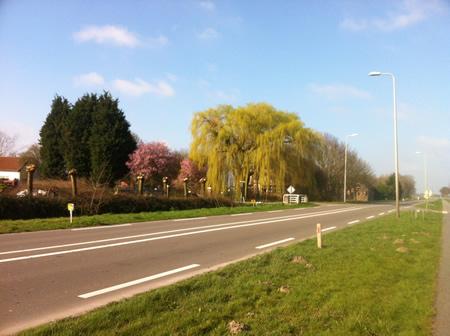 Maasdamseweg 's-Gravendeel