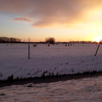 Fotocolumn 's-Gravendeel - Trekdamseweg in de sneeuw