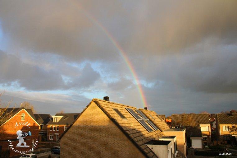 Regenboog Azaleastraat 's-Gravendeel